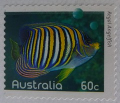 Regal Angelfish (Meremail) Tags: fish stamp letter angelfish macromonday 7daysofshooting week42modern