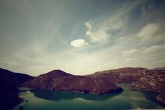 La isla (laororo) Tags: green cat island pantano catalonia catalunya isla lleida