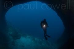 Cebu May 2013 (Paul Cowell) Tags: travel asia underwater philippines scuba diving cebu leisure diver