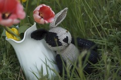 LIttle boy bunny (TumbleberryToys) Tags: rabbit bunny toy little handmade knit cotton rabbits