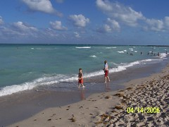 Carnival Liberty (paulmedik) Tags: beach south royal palm miamibeach