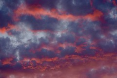 Sunset Closeup ((Jessica)) Tags: sunset sky orange color boston clouds purple vibrant massachusetts newengland somerville pw