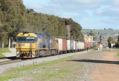 NR51 & NR113 (rob3802) Tags: pacificnational nrclass nr113 nr51 junee nsw nationalrail intermodal containertrain locomotive loco diesel diesellocomotive dieselelectriclocomotive outdoors outdoor vehicle railway rail