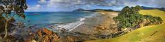 Pacific Solitude (hapulcu) Tags: newzealand northisland nz northland pacific whangarei beach kiwi panorama winter