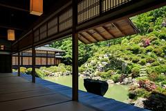 Chishakuin  () Tags: chishakuin  kyoto japan  panasonicdmczs100