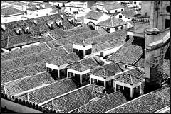 Toitures de la Mezquita-Catedral, Cordoba, Andalucia, Espana (claude lina) Tags: claudelina espana spain espagne andalucia andalousie ville town city cordoba cordoue architecture mosque cathdrale mezquitacatedral toits toitures roofs