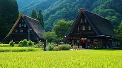 Summer / Gokayama Village -the  UNESCO World Heritage Site (maco-nonchR) Tags: gokayama   nanto  summer little old village    rice field lights sunny august manual allmanual fineday toyama  japanischer macononch japanesephotographer