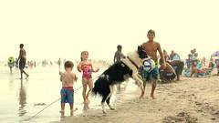 doggone fun (judecat (relaxing by the sea)) Tags: beach sand dog bordercollie dogwithball wildwood wildwooddogbeach newjersey
