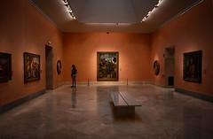 Self-reflection (Niara Art) Tags: people museum voyeur light colour art painting spectator audience reflection madrid spain museo nacional del prado nikon d7100