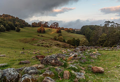 Valley Of Stones (Robert Casboult) Tags: landscape landscapephotography longexposure landscapelovers sunset valleys highlands stonewall trees clouds canoneos6d canon247028lens mountains outdoors goldenhour australia grassland rockformations farmland field rural