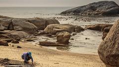 Selecting Sea Shells from the Sea Shore (AndreDiener) Tags: sea shells rocks granite girl beach boulders water morning winter