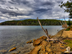 Lakeside V (elphweb) Tags: hdr highdynamicrange lake lakeside waterway trees tree forest bush australia nsw water coastal sky cloudy skies