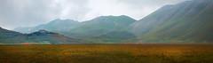 Umbria, the green land (marcosmallred) Tags: italia italy italie italien umbria umbrien castelluccio piangrande