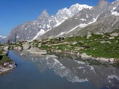 Il Monte Bianco (giorgiorodano46) Tags: giugno2010 june 2010 giorgiorodano montebianco montblanc giardinoalpino pavillonrouge valdaosta valledaoste italy alps alpes alpi alpen riflessi reflections specchio mirror