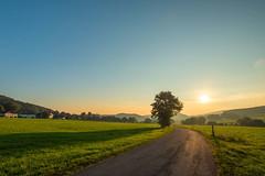 Beautiful morning (impossiblejoker) Tags: ebbegebirge herscheid deutschland germany landscape nature landstrasse countryroad sunrise sonnenaufgang sun red sky tree baum d610 nikon