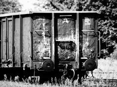 Wagon (Darek Drapala) Tags: trains train railway rail railroad wagon bw blackwhite blackandwhite industrial dump dystopia panasonic poland polska panasonicg5 legnica