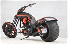 bikes-2009world-126-c-l