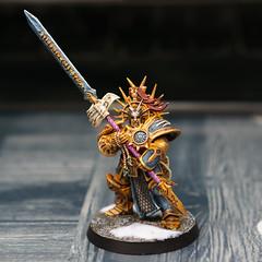 Paladin Protector (romainchaffin) Tags: sony sel50f18 nex figurine sigmar paladin protector warhammer gamesworkshop citadel miniature painting