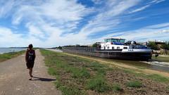 La pniche (LILI 296 ...) Tags: france ste pniche bateau canal tang ciel chemin maison canonpowershotg7x nuage paths