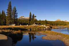 Cathedral Peak over Tuolumne River (beyondramen) Tags: tuolumnemeadows yosemite tuolumneriver