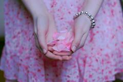 Blush (Rchel Ky) Tags: pink petals hands bracelet