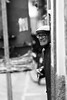 Smoker (guido.masi) Tags: street blackandwhite florence italia streetphotography firenze biancoenero tamron70200f28 guidomasi