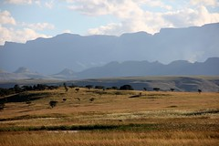 The Ampitheatre (seagreenman) Tags: drakensberg