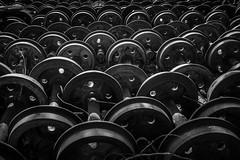 material (NO) rodante (FJTUrban (sommelier d mojitos)) Tags: bw patagonia white black blanco argentina ruta train tren mono noiretblanc negro wheels bn 40 trochita ruedas chubut ferrocarril talleres elmaitn rn40 henschelsohn
