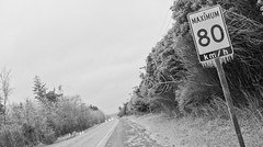 Or Less Maybe? (Light Collector) Tags: trees bw ice sign speed highway icy barrie dripping freezingrain dutchangle coating simcoecounty ourdailychallenge