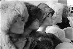 Torino 0312 (malko59) Tags: street urban blackandwhite torino hats explore turin biancoenero cappelli malko59 marcopetrino mercatinopiazzavittorio