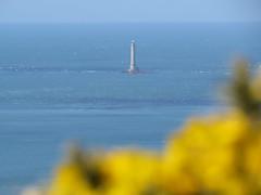 le gros du raz (doubichlou) Tags: world sea mer lighthouse france landscape what coastline normandie cote normandy phare paysages manche raz gros basse littoral goury