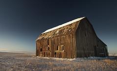 barn (just gene) Tags: old sunset snow barn rural decay farm wheat olympus alberta western e3