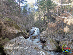Ruta Cascada del Peoncito 2013 (42) (Historia de Covaleda) Tags: espaa spain fiesta paisaje douro pinos soria historia pinar tradicion duero covaleda