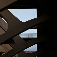 ...un altro Calatrava... (zecaruso) Tags: valencia explore ag cac santiagocalatrava ze zeca ciudaddelasartesydelasciencias cityofartsandsciences nikond300 zecaruso cicciocaruso zequadro ze