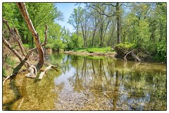Seneca Creek - Germantown, MD (gastwa) Tags: park reflection nature creek forest river landscape dc washington spring woods nikon focus scenery stream control state perspective shift maryland andrew full frame 24mm manual fullframe tilt manualfocus seneca sensor d800 f35 tiltshift pce gastwirth d800e andrewgastwirth