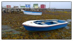 Low tide (halifaxlight (catching up)) Tags: canada seaweed misty docks boats novascotia colourful ropes sheds fishingvillage bluerocks greatphotographers flickrsbest vanagram