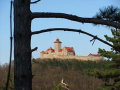 die Wachsenburg bei Holzhausen (germancute) Tags: park castle nature germany deutschland thringen thuringia wildflower radtour burg arnstadt germancute