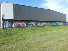 LL F1, COD, EFC, SDM & RDC Crews...Ferntree Gully, Melbourne... (colourourcity) Tags: graffiti freestyle f1 sdm graff aerosol cod burners wildstyle loveletters rdc tnb offthehook everfresh flickrandroidapp:filter=none colourourcity