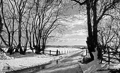 Mendip winter (Nige's Place) Tags: uk travel england snow countryside britain somerset mendips 5photosaday nigelkendall nigesplaceportfolio nigesplace