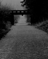 Down the lonely path (SCOTTS WORLD) Tags: bridge trees blackandwhite nature fog digital dark fun midwest december mood pov path michigan may atmosphere creepy panasonic adventure oxford gravel 248 2012 oaklandcounty 2013 pollyannatrail