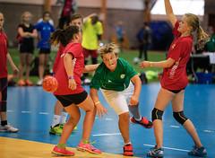 HandballMesterliga-7 (Sommereventyret) Tags: merker sommereventyret periode2 2016 hndball mesterliga finaler premieutdeling