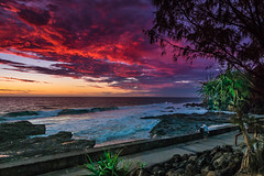 sunrises gold coast australia (rod marshall) Tags: hermitage snapperrocks hermitagesnapperrocks pinksunrise oceansunrise goldcoastsunrise snapperrockssunrise