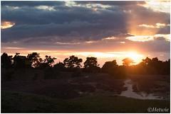 zonsondergang (HP015431) (Hetwie) Tags: natuur sun sunset planten posbank zon heide nature veluwe heather zonsondergang rheden gelderland nederland