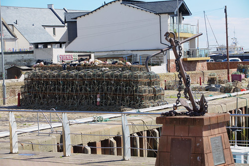 Arbroath Harbour 3