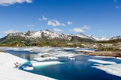 IMG_4978 (Brice.Petitjean.Photographie) Tags: montagne mountain grison grimselpass lac lake ice snow grimsel col suisse switzerland