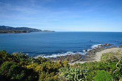 Breaker Bay (Tim J Forbes) Tags: wellington nz nikon d610 sigma 28 2470