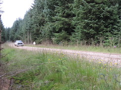Grampian Stages Rally 2016 (RS Pictures) Tags: src scottish rally championship coltel grampian stages stage 2016 durris ss forest forestry road track special ss6 2 ford escort mk2 mkii rs motorsport auto