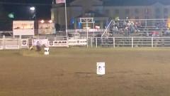 WP_20160824_21_49_31_Pro (Jennifer Kumar) Tags: roadtrip2016 2016 ussrt2016 usa oklahoma midwest nuthouse rodeo horse cowboy