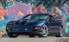 2002 NBM WS6 Trans Am (scott597) Tags: pontiac trans am ws6 navy blue metallic ccw wheels ls1 dayton ohio 2nd street market