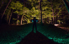 IMG_5550 (matek 21) Tags: lightpainting longexposure lp light liht varta vartabatteries vartaflashlight wood design painting photo photography mateuszkrol mateuszkrl malowaniewiatem alien strange tree night bulb canon eos 600 d samyang fisheye 8mm